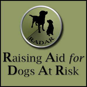 RADAR (Raising Aid for Dogs At Risk)