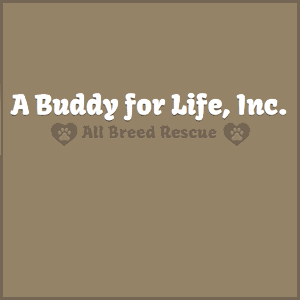A Buddy for Life, Inc.
