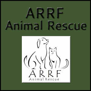 ARRF Animal Rescue