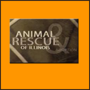Animal Rescue of Illinois