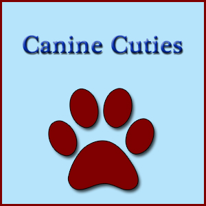 Canine Cuties