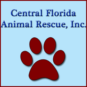 Central Florida Animal Rescue, Inc.