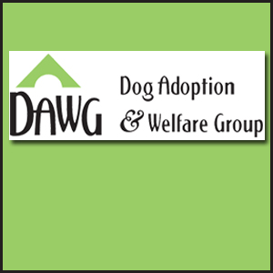 DAWG (Dog Adoption & Welfare Group)