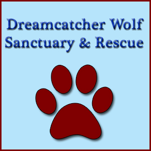 Dreamcatcher Wolf Sanctuary & Rescue