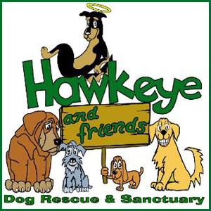 Hawkeye & Friends Dog Rescue & Sanctuary