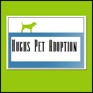 Hughs Pet Adoption