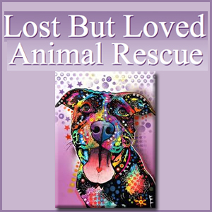 Lost But Loved Animal Rescue