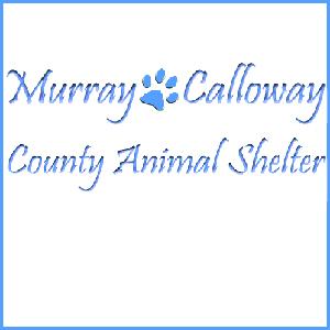Murray Calloway County Animal Shelter