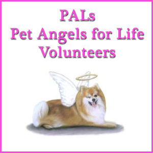 PALs Pet Angels for Life Volunteers
