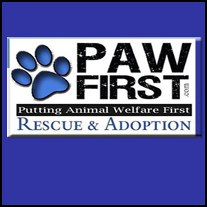 PAW First (Putting Animal Welfare First)