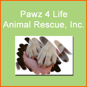 Pawz 4 Life Animal Rescue, Inc.