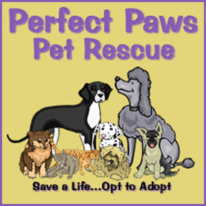 Perfect Paws Pet Rescue