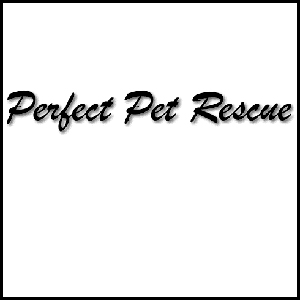 Perfect Pet Rescue
