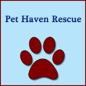 Pet Haven Rescue