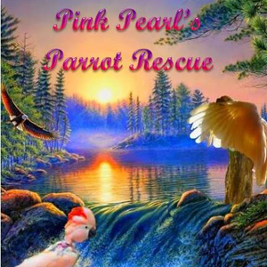 Pink Pearl's Parrot Rescue