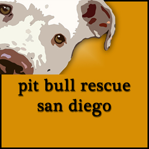 Pit Bull Rescue San Diego