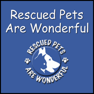 Rescued Pets Are Wonderful