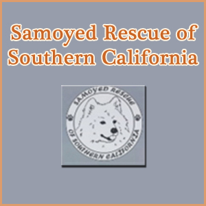 Samoyed Rescue of Southern California