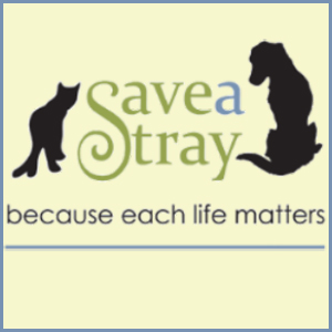 Save A Stray