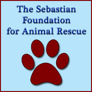 The Sebastian Foundation for Animal Rescue