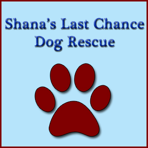 Shana's Last Chance Dog Rescue