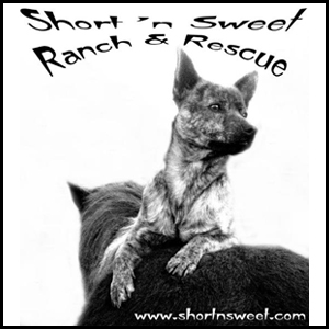 Short 'n Sweet Ranch & Rescue