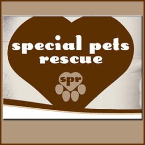Special Pets Rescue